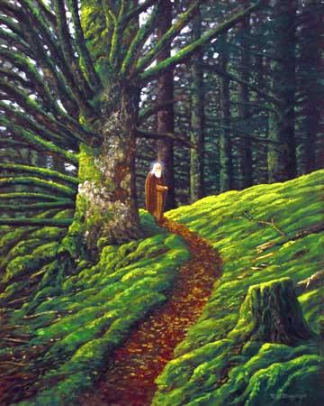 http://www.lukedingman.com/images/hermanstrail1.jpg