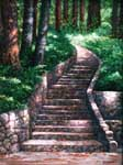 Oil painting of rock stairs and redwoods.
